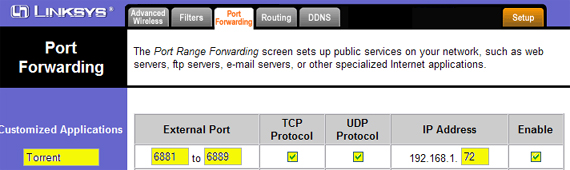 torrent port forwarding - increase bit torrent download speed